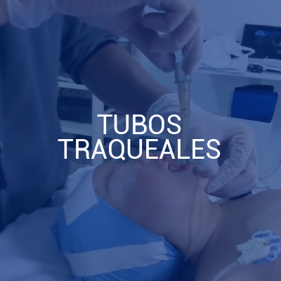 Tubos Traqueales